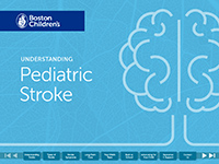 Stroke ebook